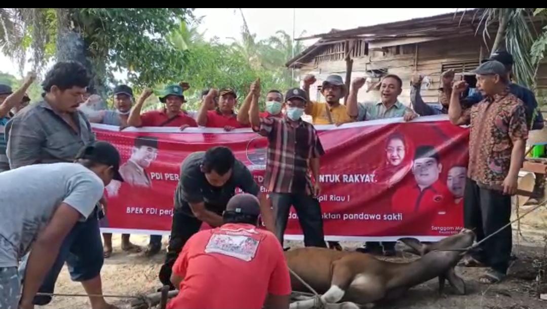 Legislator PDI perjuangan Ir.efendi Sianipar Berbagi Daging sapi untuk masyarakat