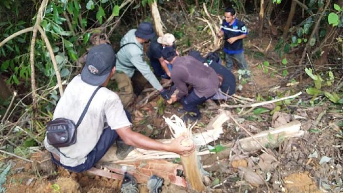 BBKSDA Riau Evakuasi Beruang Madu Terluka Kena Jerat di Indragiri Hulu