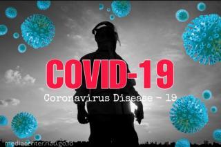 Update COVID-19 Riau: Pasien Sembuh Bertambah 82 Orang