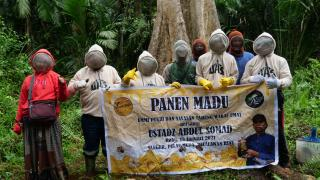 Hargailah Petani, Ini Petualangan UAS Dan Sahabat Saat Panen Madu Lebah di Hutan