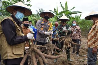 Antisipasi Ketahanan Pangan Kapolresta Pekanbaru, Walikota & Dandim 0301 Resmikan Kampung Tangguh